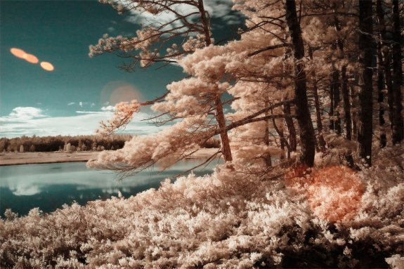Infrared Photography