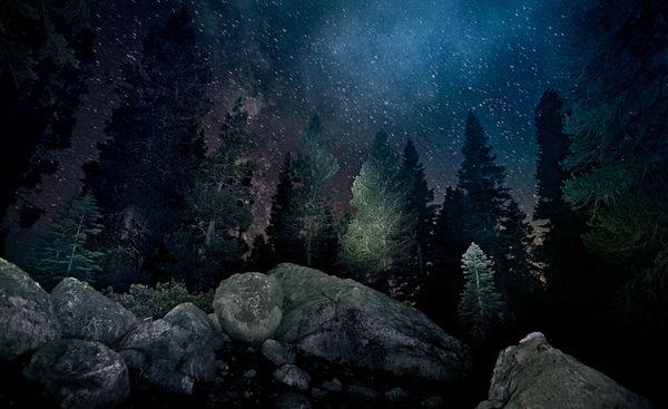 night-photography-14