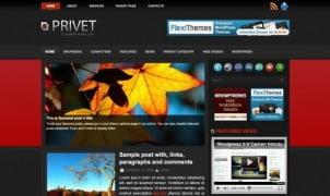10 Najboljih WordPress Tema Besplatno! II Deo