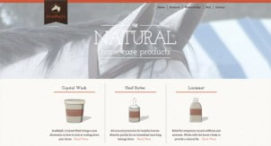 Web Dizajn Trendovi Septembar 2011
