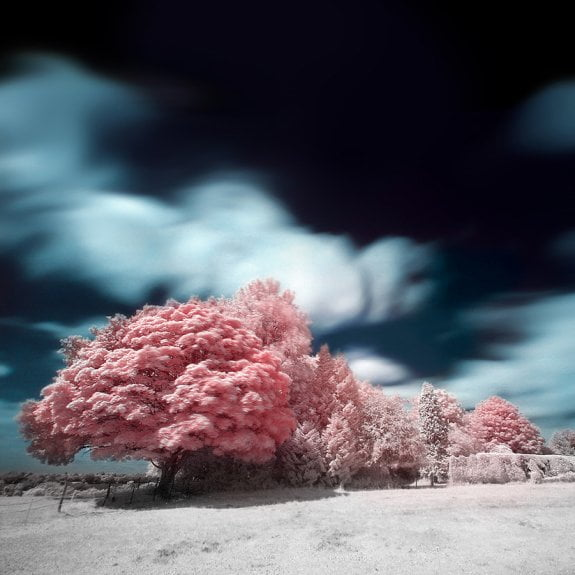 35 fantastičnih infracrvenih fotografija