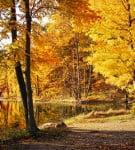 35 prelepih slika prirode za desktop