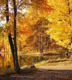 35 Prelepih Slika Prirode za Vaš Desktop