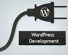 Upoznajte WordPress Teme i Strukturu Fajlova