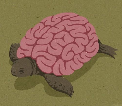 kreativne-ilustracije