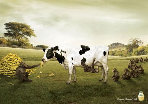 smesne-reklame-31