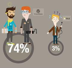 Infografika: Profesionalni Web dizajneri vs. Amateri