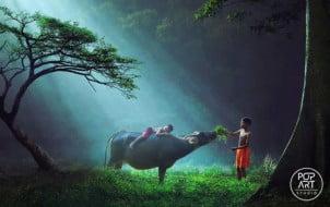 30 Fotografija dečije igre širom sveta
