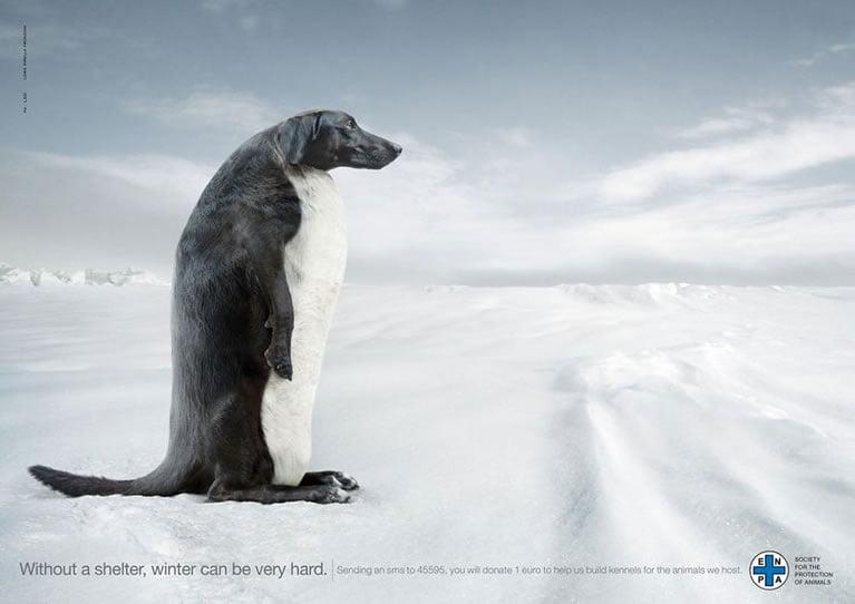 brilijantne-reklame-koje-ukazuju-na-probleme-danasnjice-18