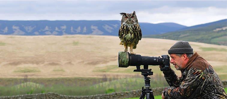 fotografije-zivotinja (29)