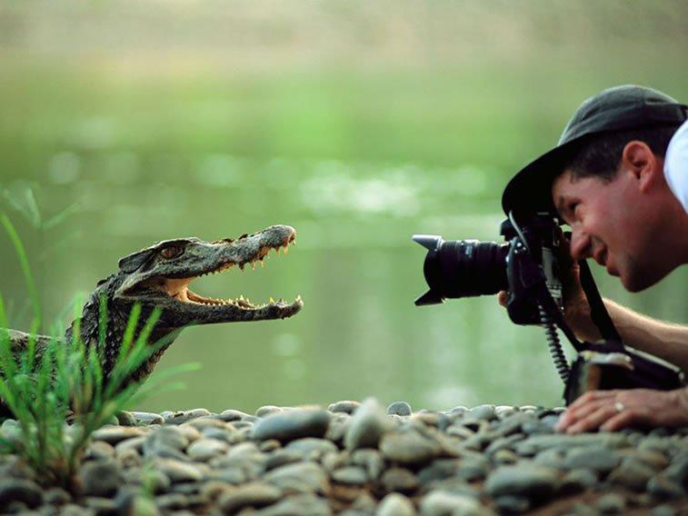 fotografije-zivotinja (3)