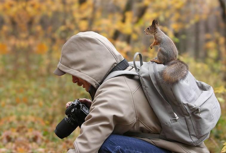 fotografije-zivotinja (5)