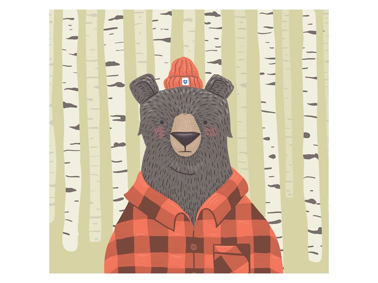 ic_bear