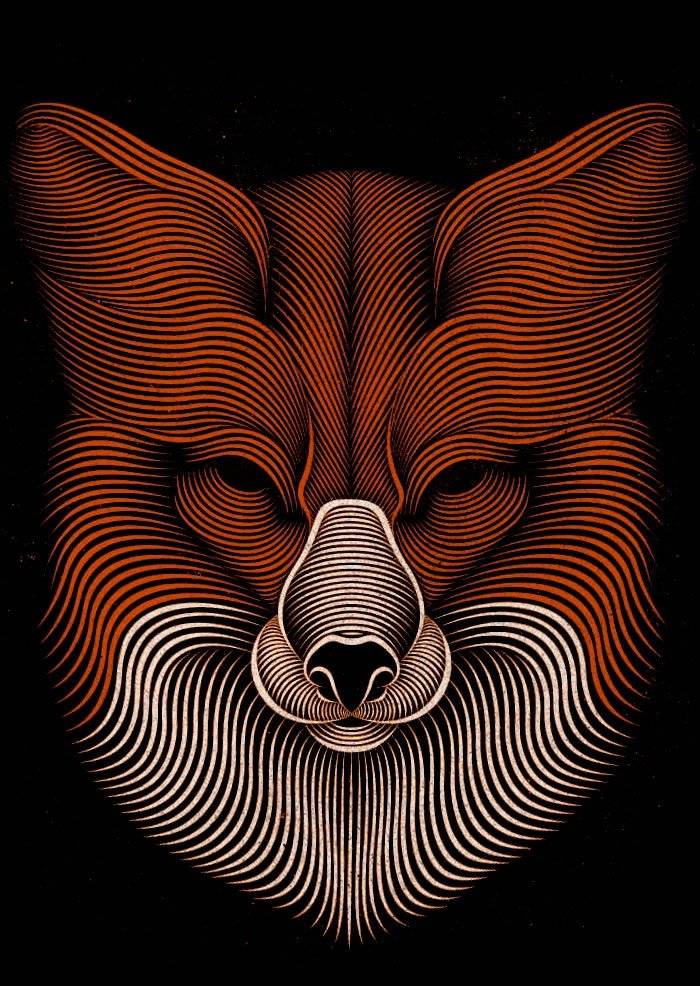 fox by patrick seymour