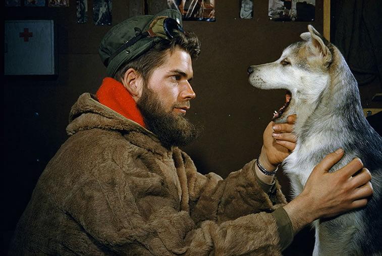 ispitivanje zuba aljaskog malamuta kod Južnog Pola 1957.