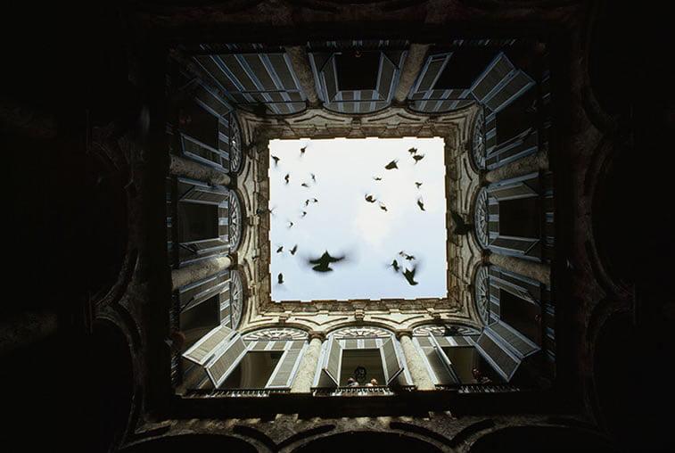 jato ptica u zatvorenom dvorištu zgrade u Staroj Havani 1987.