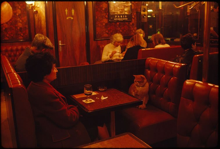 mačka pravi društvo ženi u pariskom kafeu 1988.