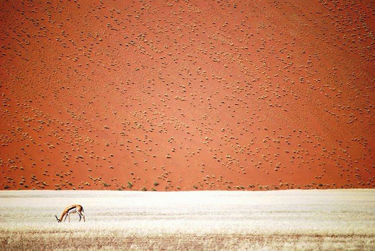 Namibijska pustinja, Namibija