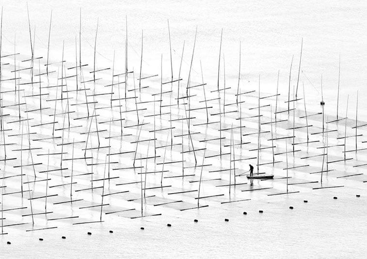 Obrađivanje mora, Kina