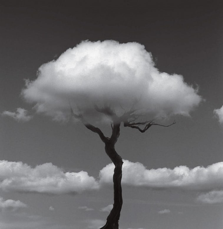 black 'n white mind bending optical illusions by Chema Madoz (12)