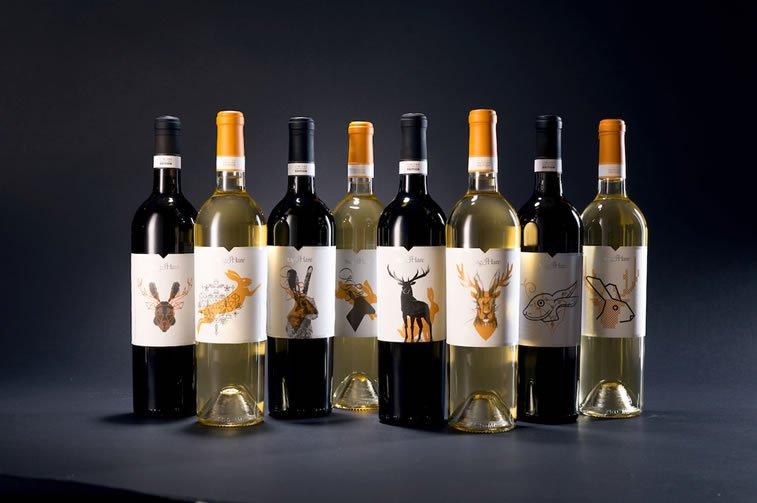 dizajn etikete za vino stag and hare