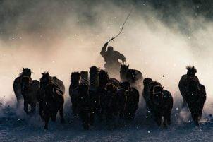 11 Nagrađenih fotografija sa takmičenja Nacionalne geografije