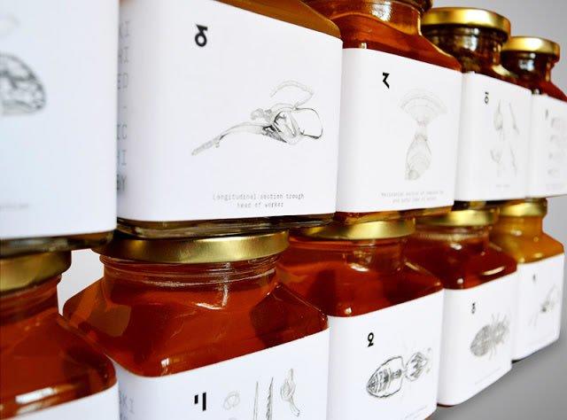 dizajn etikete za med pcelica kraljevo (5)