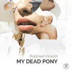 raphael vicenzi my dead pony collages