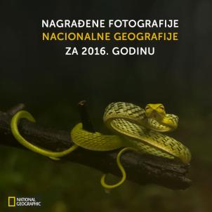 Nagrađene fotografije Nacionalne geografije za 2016. godinu