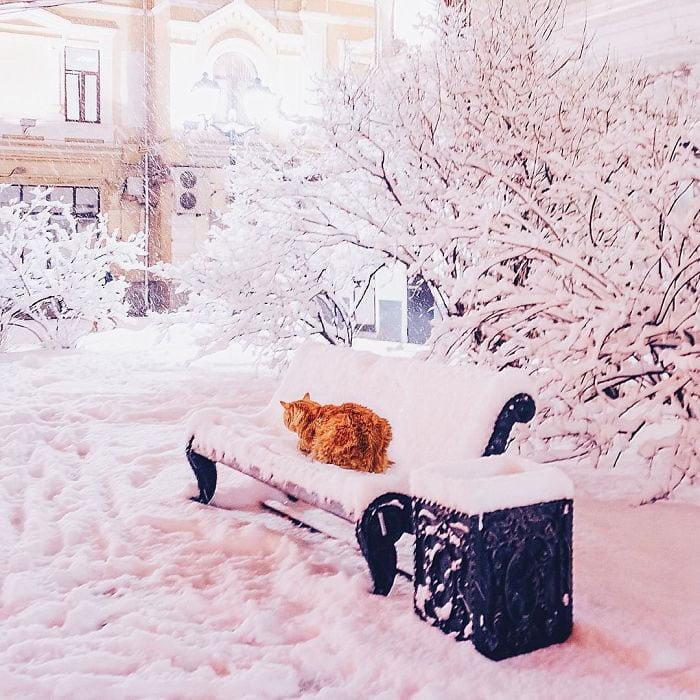 Zimska idila Kristine Makejeve 28