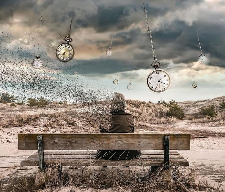 Spoj stvarnosti i iluzija Huseina Šahina 28