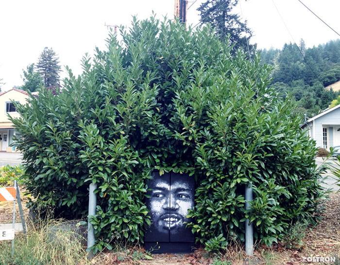 Frizure od krošnji drveća 11