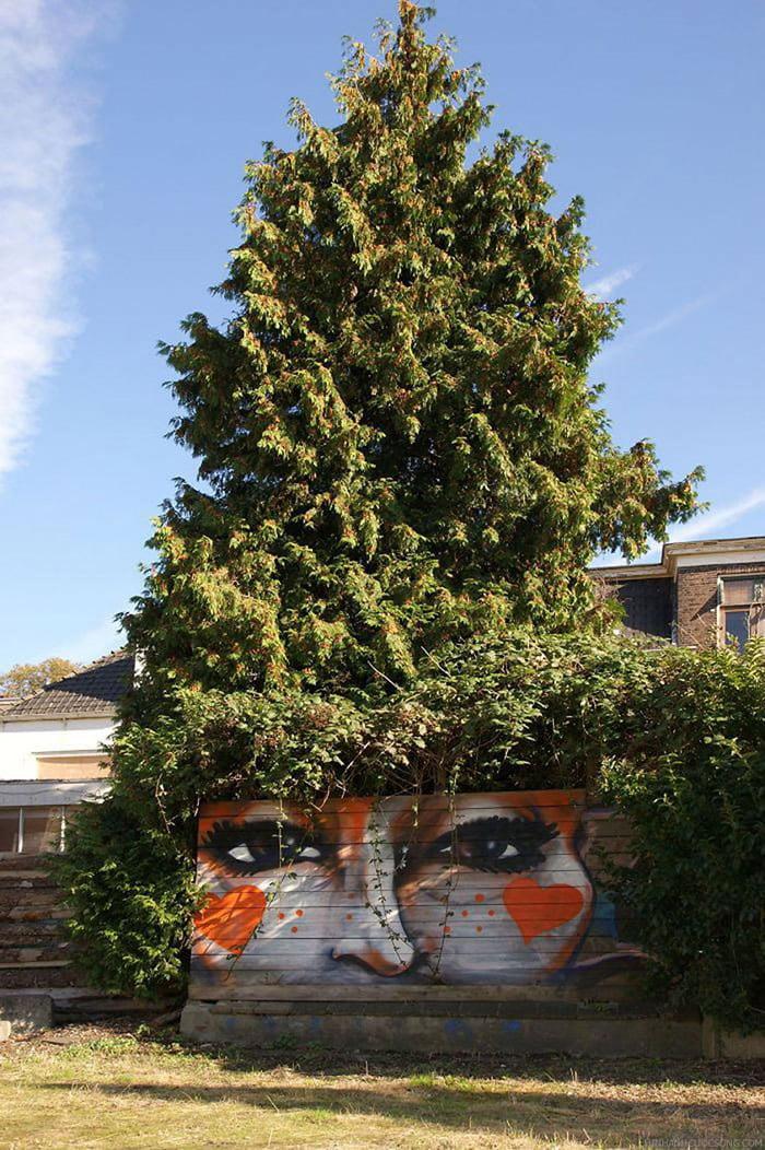 Frizure od krošnji drveća 12
