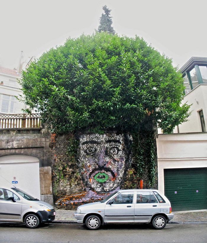 Frizure od krošnji drveća 14