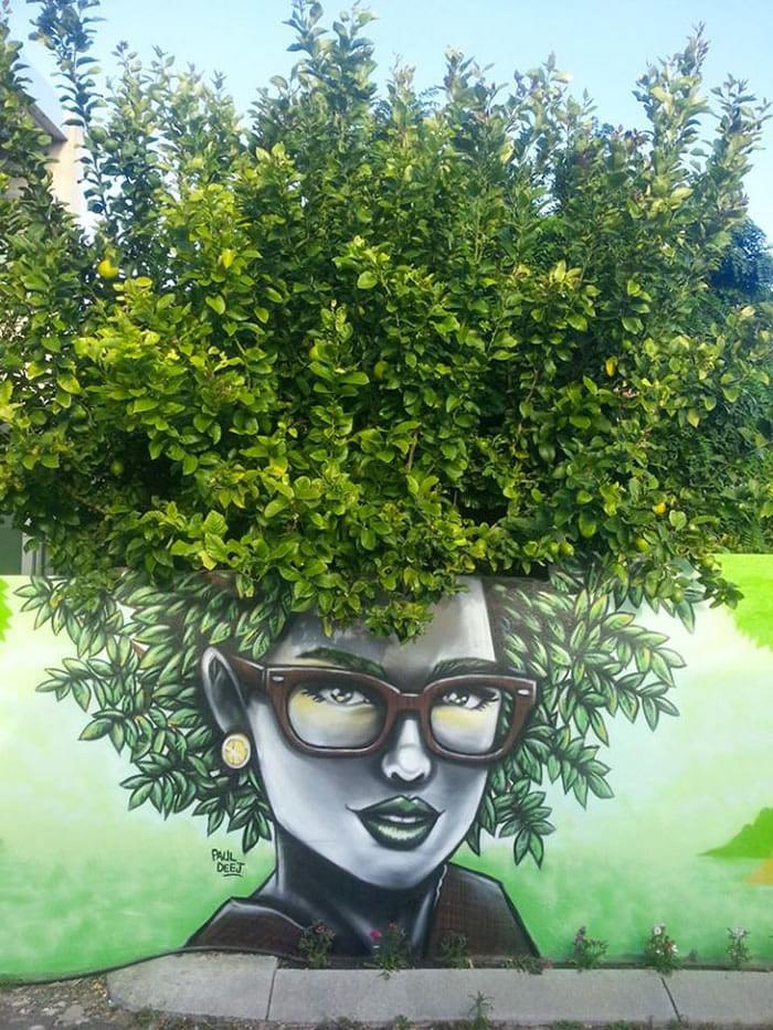 Frizure od krošnji drveća 17