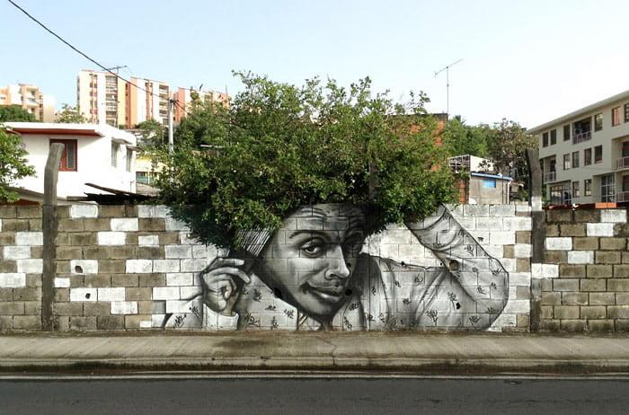 Frizure od krošnji drveća 8