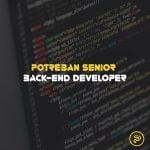 senior back-end developer