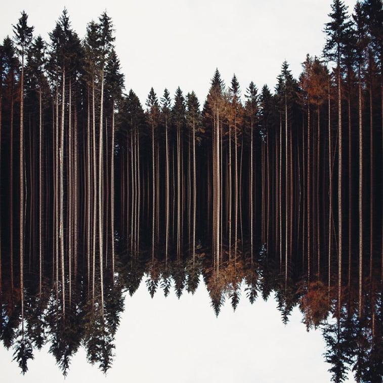 Finalisti najvećeg fotografskog takmičenja na svetu 15
