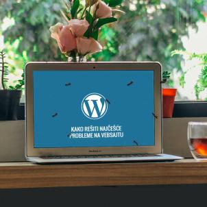 Kako rešiti najčešće probleme na vebsajtu