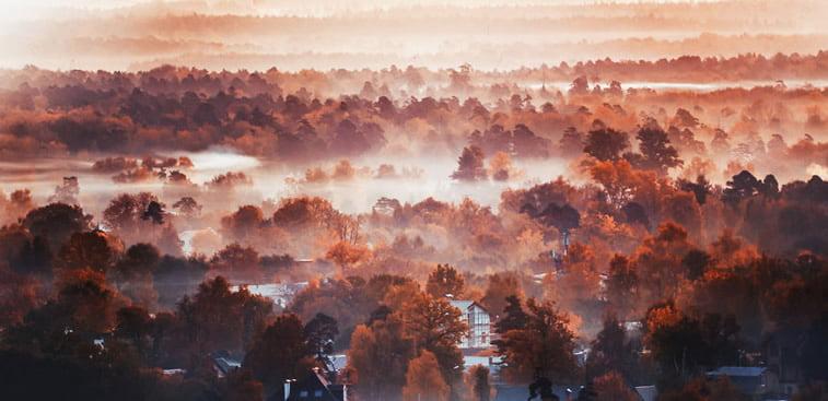 Fotografije zlatne jeseni Kristine Makejeve 14