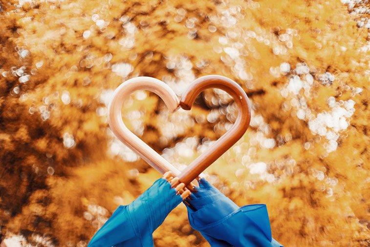 Fotografije zlatne jeseni Kristine Makejeve 19