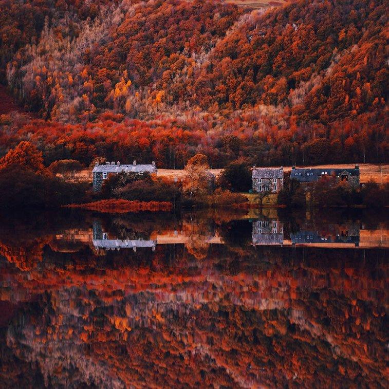 Fotografije zlatne jeseni Kristine Makejeve 5