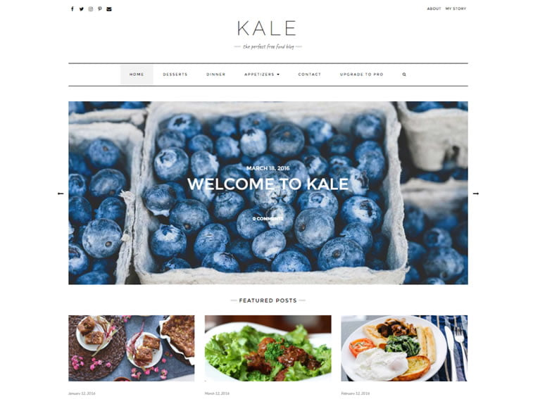 kale wordpress theme download