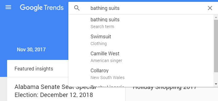 bathing suit google trends