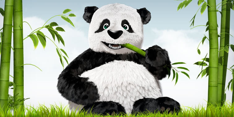 tiny png panda