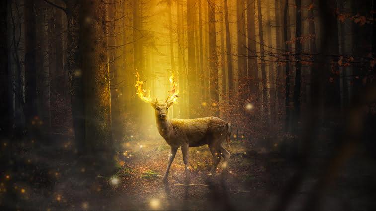 fantasy deer Pixabay peter_pyw pozadine za desktop