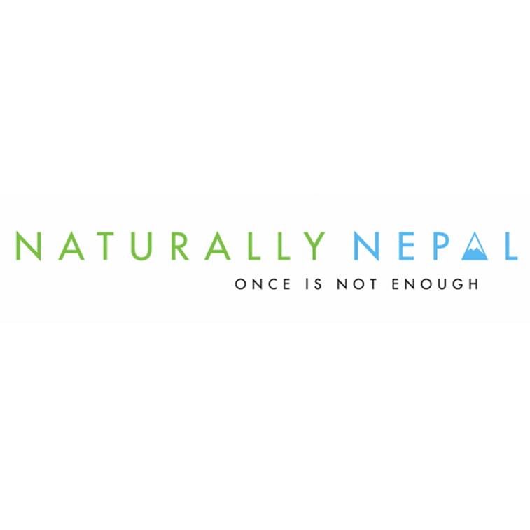 branding visit nepal minimalistic logo