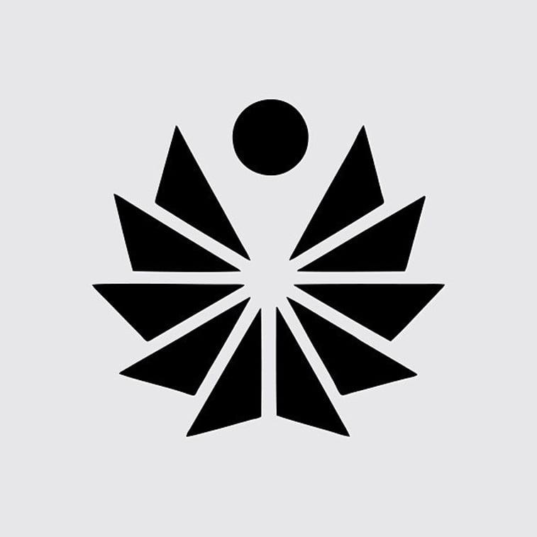 pacific trgovina logo dizajn figura trouglovi