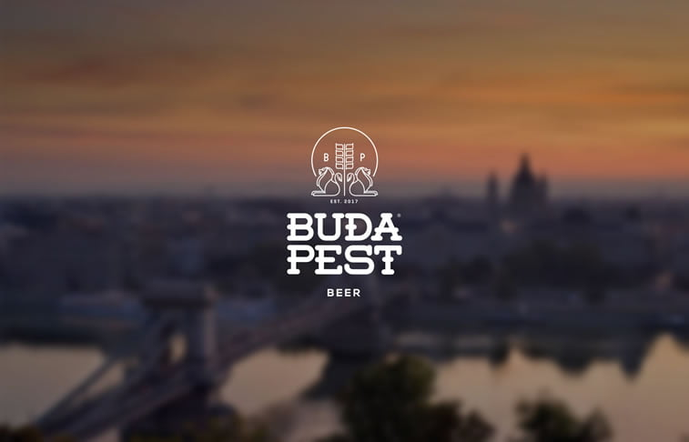 beer packaging design budapest 4