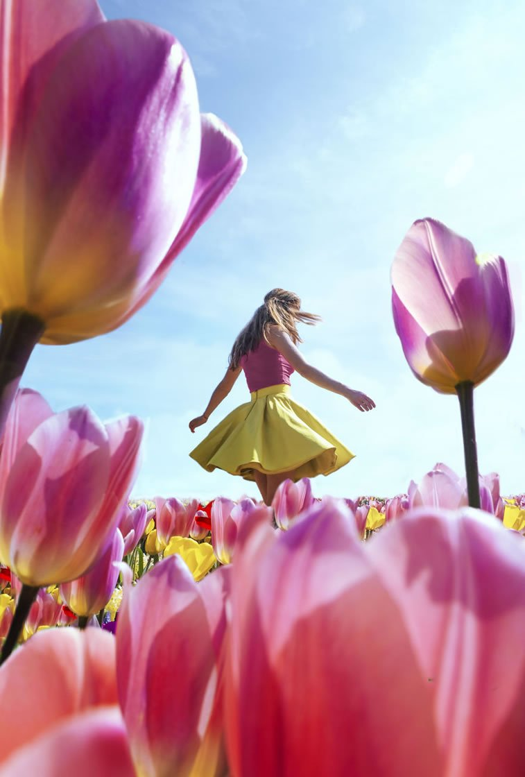 blooming fields of the netherlands 12 girl in tulip field